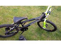 Raleigh BMX