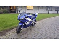 Yamaha Yzf R1 2001 only 10040 miles Future classic bike
