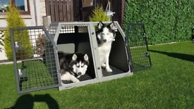 Trans K9 double dog cage