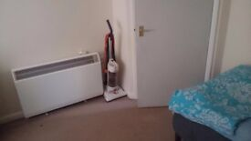 SHORT TERM LET : Fully furnished, Spacious room available near Haymarket (IMMEDIATELY)
