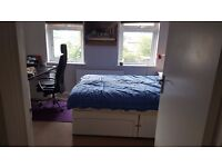 Double Room for rent Ashford
