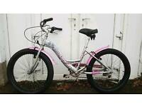 Concept beach cruiser mountain bike