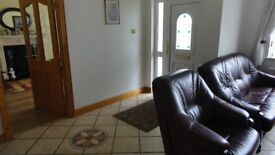 ROOM TO LET IN MODERN BUNGALOW