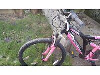 Pink and black bike
