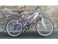 FULLY SERVICED 24 INCH WHEELS MAGNA VIENNA BICYCLE