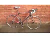 Specialized Allez Sport 2013 road bike, just serviced!