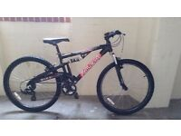 """Raleigh Ignition 26"""" Mens mountain Bike frame suspension frame 17""""/wheels 26/gears 21"""""""