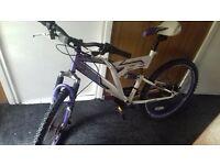dunlop mountain bike 50 pound