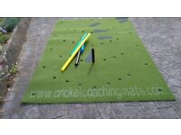 cricket coaching mat