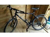 Adult Bike £50