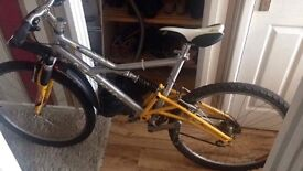 Marin alpine 1998 mountain bike