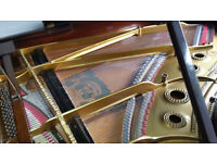 Steinway & Sons Model A Grand Piano Rosewood c.1900 lovely instrument excellent condition
