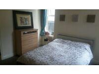 1 bedroom apartment for rent Ballyhackamore