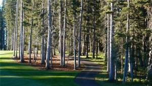 92 Sunset WY , Priddis Greens, Alberta