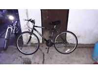 **CONCEPT**CONQUEST**MOUNTAIN BIKE**READY TO RIDE**GOOD CONDITION**SHIMANO EQUIPPED**