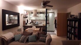 Lovely, Spacious 2 Bed/Bathroom Furnished Flat in Hackney E9