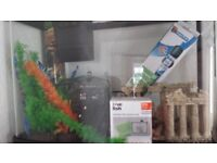 fish tank tropical or cold water