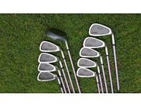 Super Ladies / Junior KING SNAKE Golf Clubs 3-SW + 7W Graphite Shafts