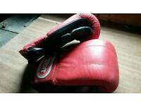 Punch bag and gloves,boxing / kickboxing/training/fitness/frustration