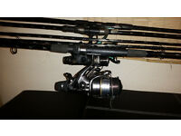 SHIMANO 3 x Carp Rods and 3 x Reels