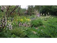 Experienced Assistant Gardener Required (PART TIME)