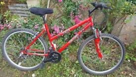Vertigo Teide Bike