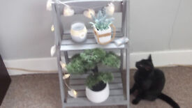 Two step painted grey wooden ladder display