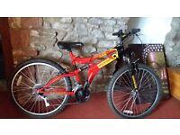 Mountain Bike for sale vgc