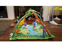 Fisher-Price Rainforest Gym Play Mat