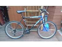 mens trailblazer mountain bike.