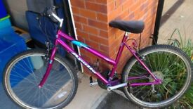 Apollo Entice ladies bike