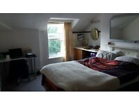 Large bright double room on Cheltenham Road. £525 all bills included. Available from November