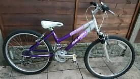 Diva 20 inch mountain.bike