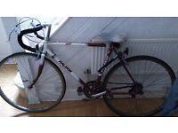 Raleigh Winner, 10 Gears, Racer/Road bike