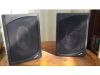 Phillips ICT multimedia speakers, passive, unusual elliptical driver.