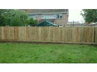Landscape and fencing
