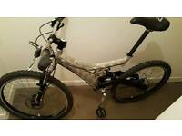Barracuda mountain bike.