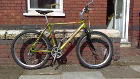 Radford sport Mountain bike.