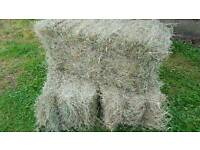 HAY good quality . Well packed small bales