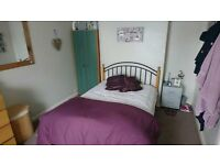 Two Rooms Available in Friendly Shared House