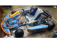 Rotax 125 go kart