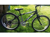 24 inch wheel raleigh mountain bike 15 speed