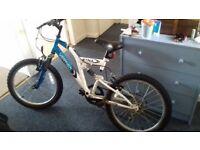 A boys' Etna Vertigo mountain bike, 20inch, in good condition