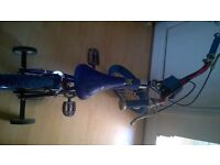 Bicycle BMX blue for boy.