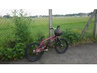 We the people bmx downhill bike
