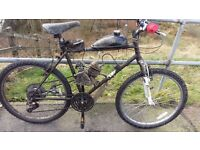 80cc 2 stroke Mountain bike
