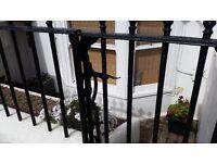 Unfurnished One Bedroom Garden Flat in Poets Corner Hove to rent