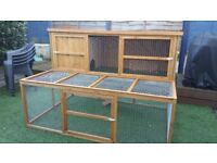 A lovely rabbit pair with hutch, carriers and accessories - £50 all in
