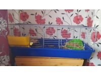 5 ft indoor rabbit cage house hutch