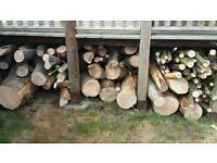 Job lot 1.5 ton Logs, hydraulic log splitter and foot operated log vice